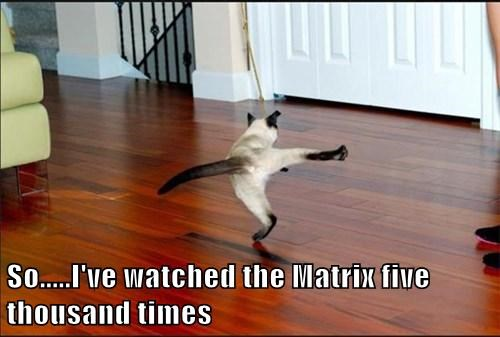 So.....I've watched the Matrix five thousand times