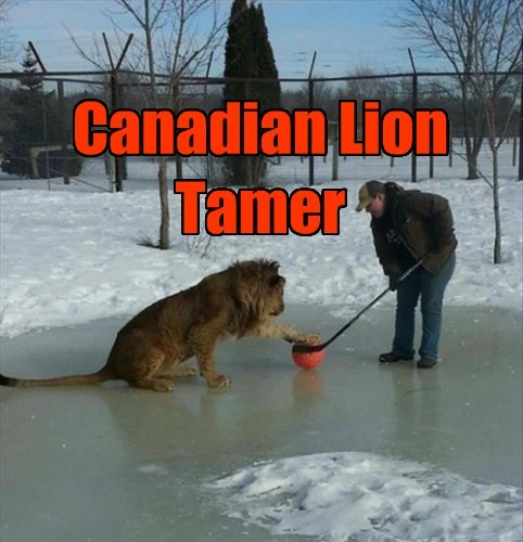 That's how you tame a Canadian Lion