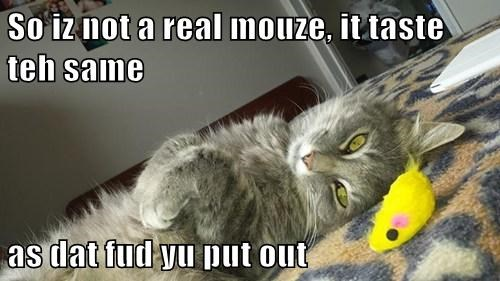So iz not a real mouze, it taste teh same  as dat fud yu put out