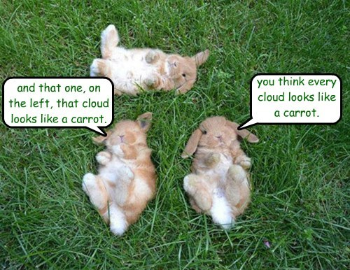 and that one, on the left, that cloud looks like a carrot.