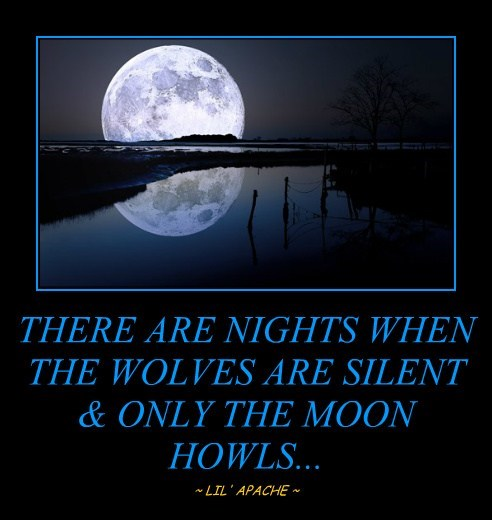 THERE ARE NIGHTS WHEN THE WOLVES ARE SILENT & ONLY THE MOON HOWLS...
