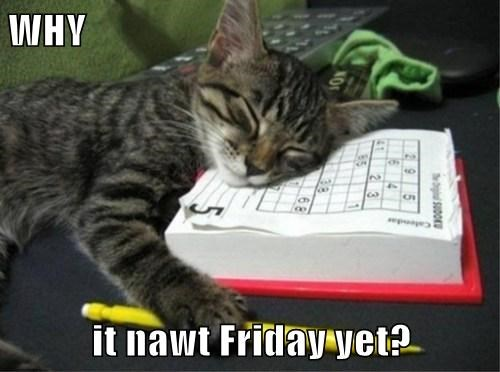 WHY  it nawt Friday yet?