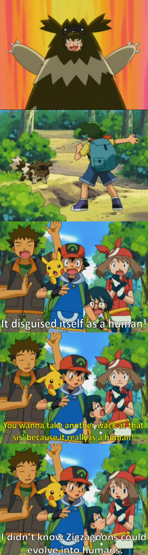 May is Just as Dumb as Ash