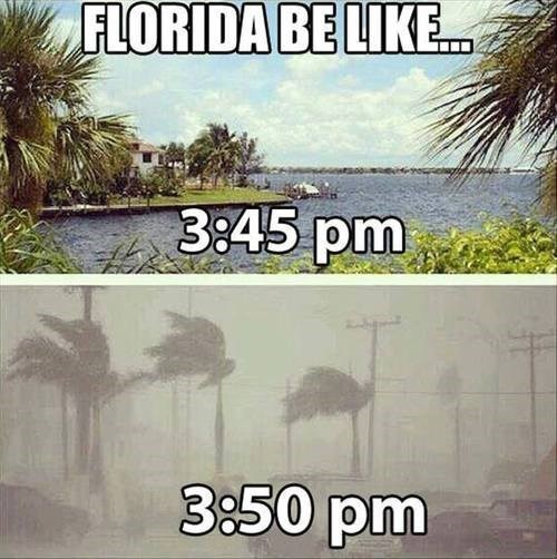 Florida: The Redheaded Stepchild State