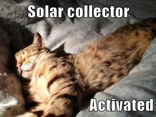 Solar collector  Activated