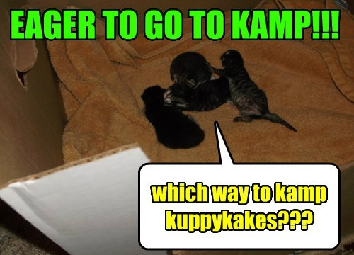 EAGER TO GO TO KAMP!!!