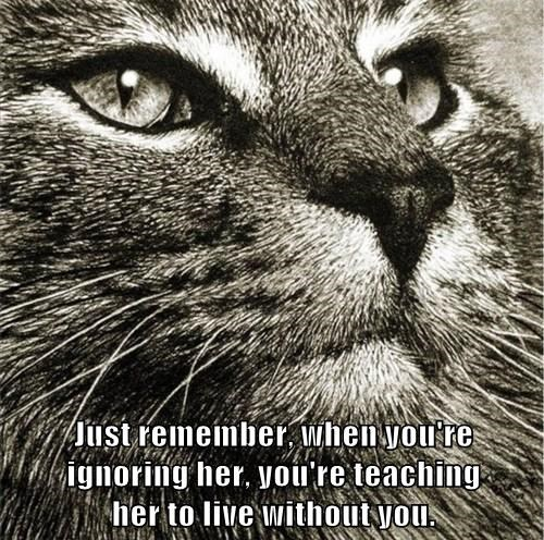 Just remember, when you're                ignoring her, you're teaching                                     her to live without you.