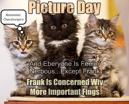 Miiiiss? Frankie's Droolin' On My Paw Again!