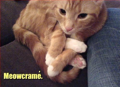 Meowcrame.