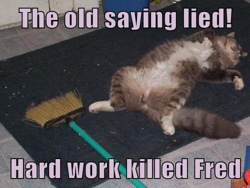The old saying lied!  Hard work killed Fred