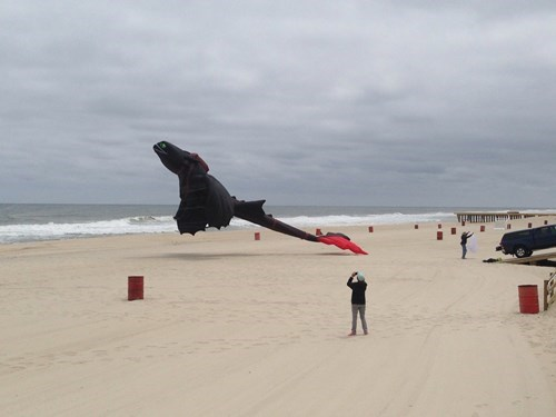 The Nicest Dragon-Kite on the Beach