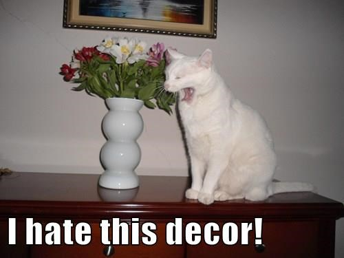 I hate this decor!