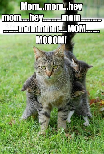 Mom...mom...hey mom.....hey...........mom.....................mommmm.....MOM........MOOOM!