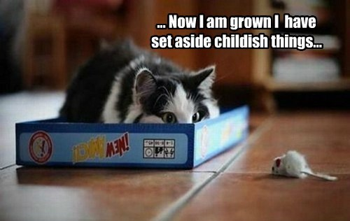 ... Now I am grown I  have set aside childish things...