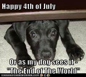 "Happy 4th of July  Or as my dog sees it - ""The End of The World"""