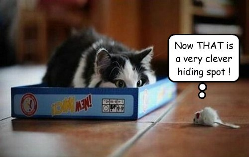 Now THAT is a very clever hiding spot !