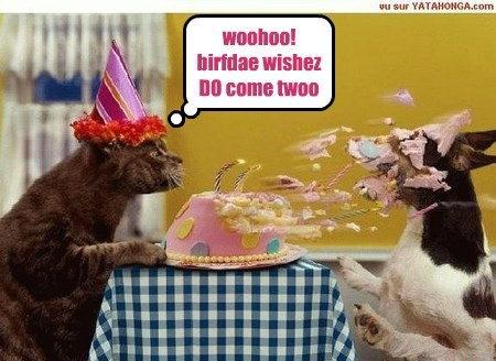 woohoo!  birfdae wishez DO come twoo