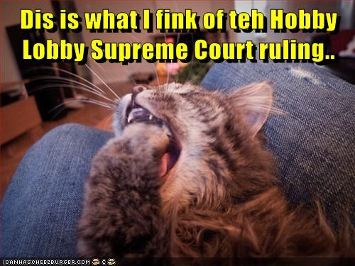 Dis is what I fink of teh Hobby Lobby Supreme Court ruling..