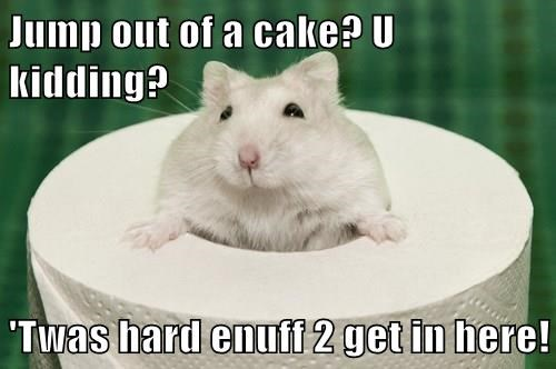 Jump out of a cake? U kidding?   'Twas hard enuff 2 get in here!