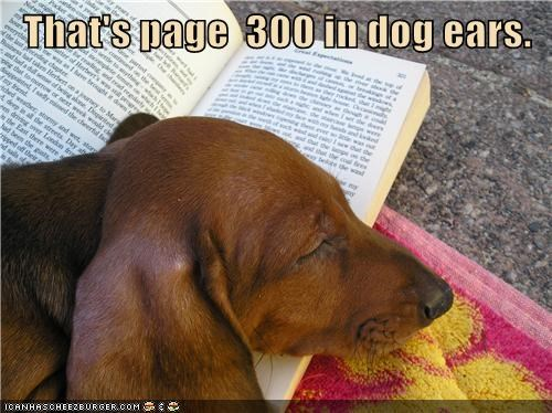 That's page  300 in dog ears.
