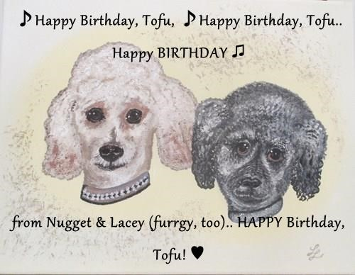 ♪Happy Birthday, Tofu, ♪Happy Birthday, Tofu.. Happy BIRTHDAY ♫  from Nugget & Lacey (furrgy, too).. HAPPY Birthday, Tofu! ♥
