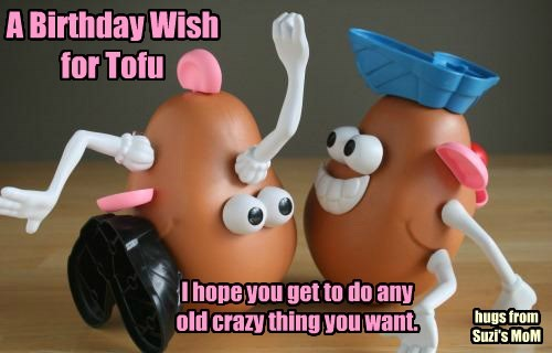 A Birthday Wish  for Tofu