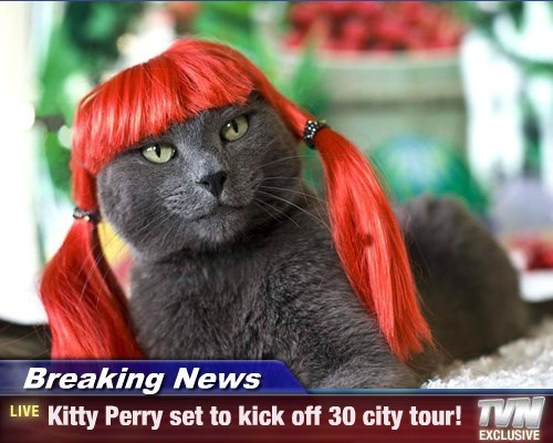 Breaking News - Kitty Perry set to kick off 30 city tour!