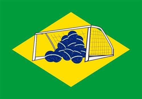 The New Brazilian Flag!