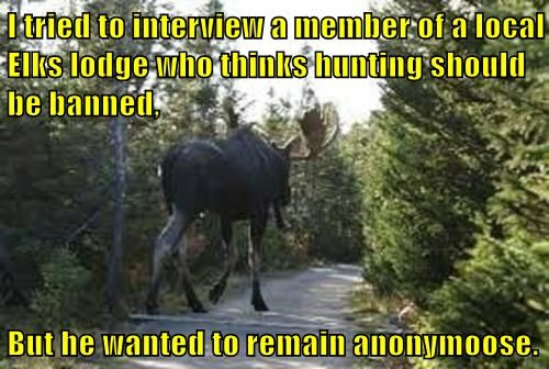 I tried to interview a member of a local Elks lodge who thinks hunting should be banned,  But he wanted to remain anonymoose.