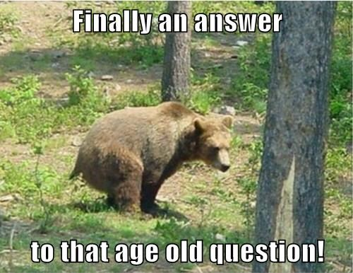 Finally an answer  to that age old question!