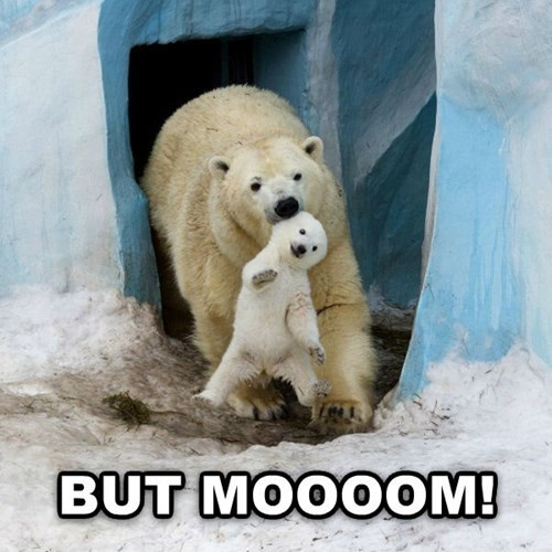 kids,polar bear,whining,parenting,mom