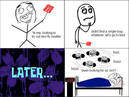 bugs,rage,sleeping