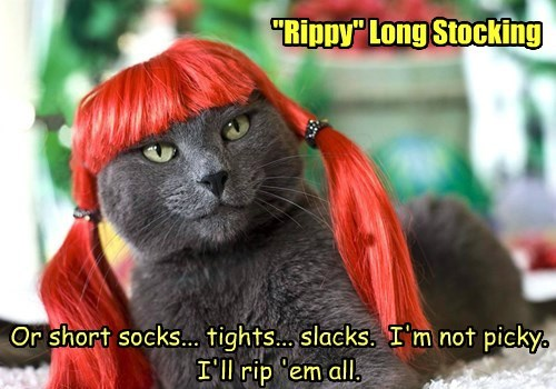 """Rippy"" Long Stocking"