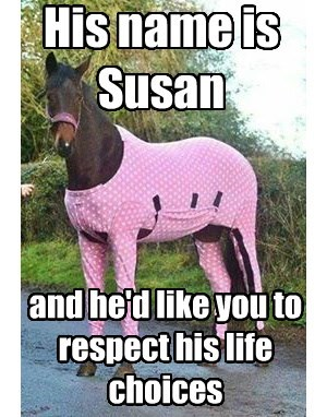 His name is Susan