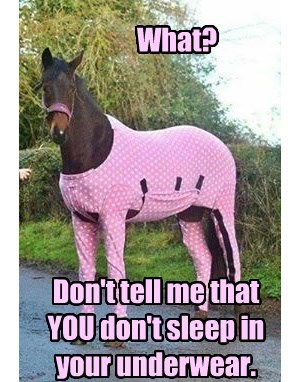 horses,underwear,pink