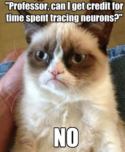 """""""Professor, can I get credit for time spent tracing neurons?"""""""