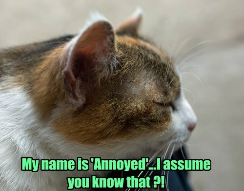 My name is 'Annoyed'...I assume you know that ?!
