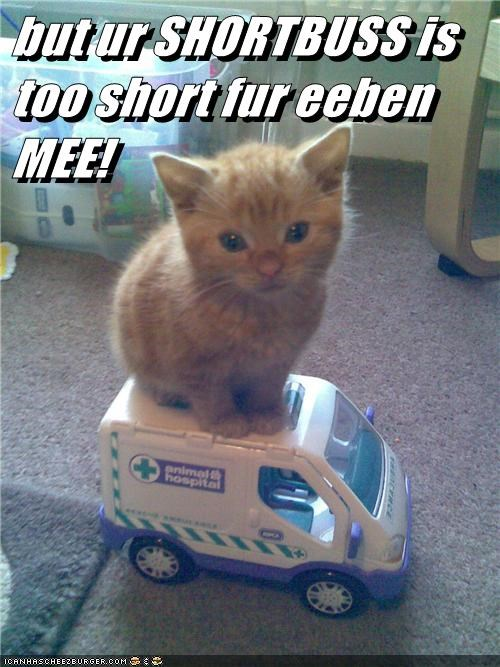 but ur SHORTBUSS is too short fur eeben MEE!