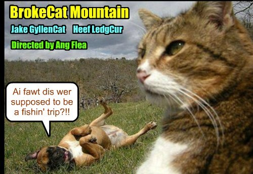 BrokeCat Mountain..