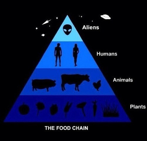 Aliens,food chain,funny,pyramind
