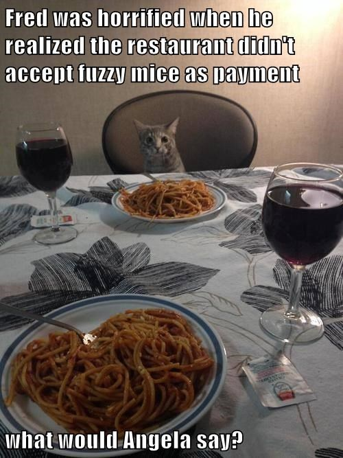 Fred was horrified when he realized the restaurant didn't accept fuzzy mice as payment  what would Angela say?