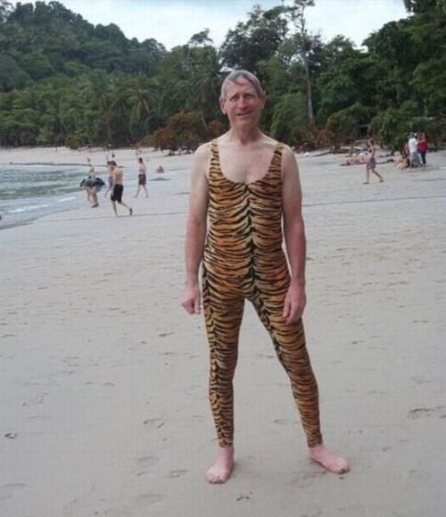 beach,poorly dressed,tiger,skintight