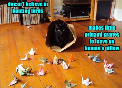 Every Cat's Got To Have A Hobby
