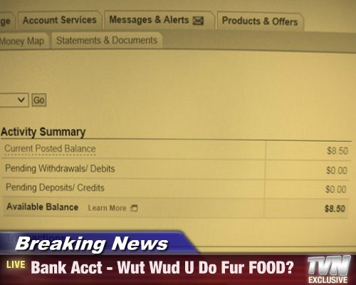 Breaking News - Bank Acct - Wut Wud U Do Fur FOOD?