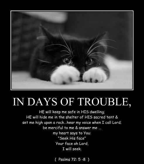 IN DAYS OF TROUBLE,