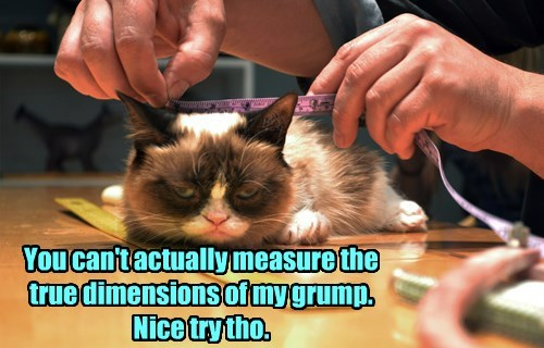 You can't actually measure the true dimensions of my grump.  Nice try tho.