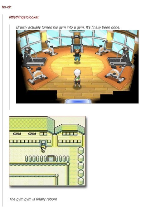 The Place Were Mega Swampert Workout