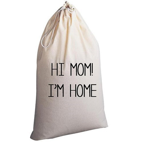 A Laundry Bag For Young Adults