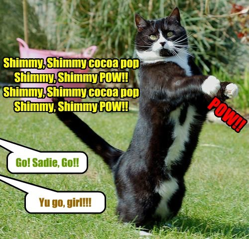 Shake it, Kitty!