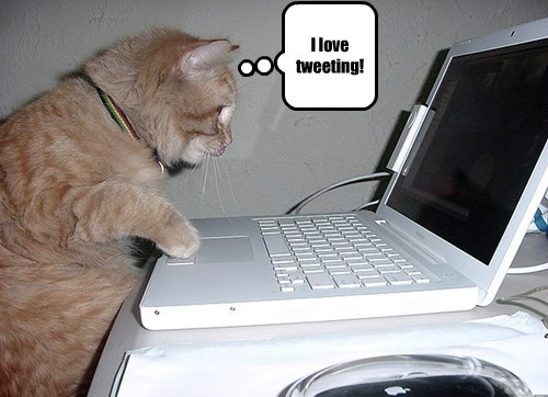 I love tweeting!
